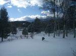 071122_snow.jpg